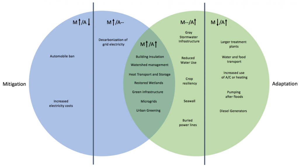 Figure 1: A Venn diagram classification model for adaptation and mitigation strategies, highlighting those strategies that offer co-benefits. Policies and programs placed in the central lens have positive impacts on both mitigation (M) and adaptation (A). Those policies outside of the overlapping region, but inside the lines are measures that benefit one strategy and have no measurable impact on the other. Those outside the parallel lines (M↑/A↓ and M↓/A↑) have a negative impact on the opposing strategy.