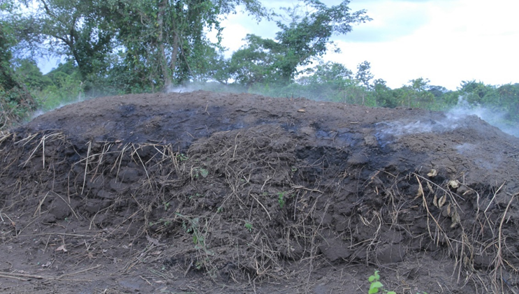 Figure 2: Charcoal production in a typical earth-mound kiln in an open forest in Nwoya district, Uganda