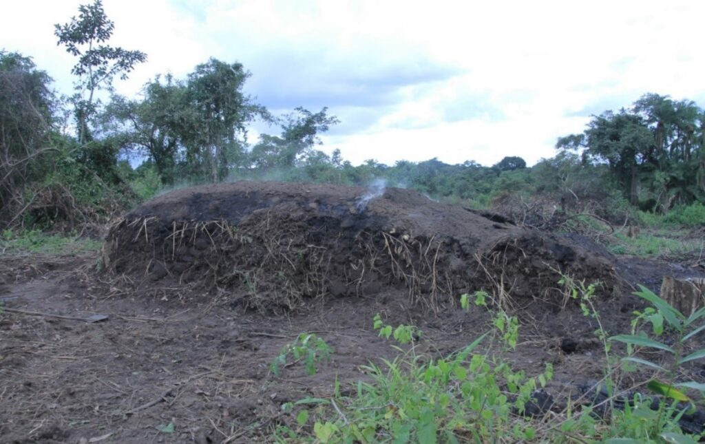 Figure 1: A single-use earth-mound kiln in an open forest in Northern Uganda.